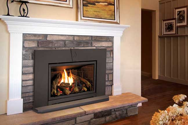 Royal Fireside - Enviro Gas Fireplace Inserts